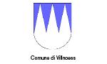 c-vilnoess